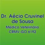 MÉDICO VETERINÁRIO AÉCIO CRUVINEL DE SOUSA