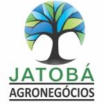 CORRETORA DE GRÃO JATOBÁ AGRONEGÓCIOS