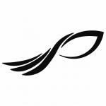 PRIME HAIR CLÍNICA CAPILAR